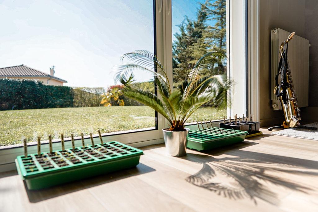 Salon incubateur à semis
