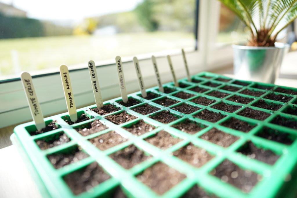 Mes semis de tomates 2020 - Serfouette & Binette