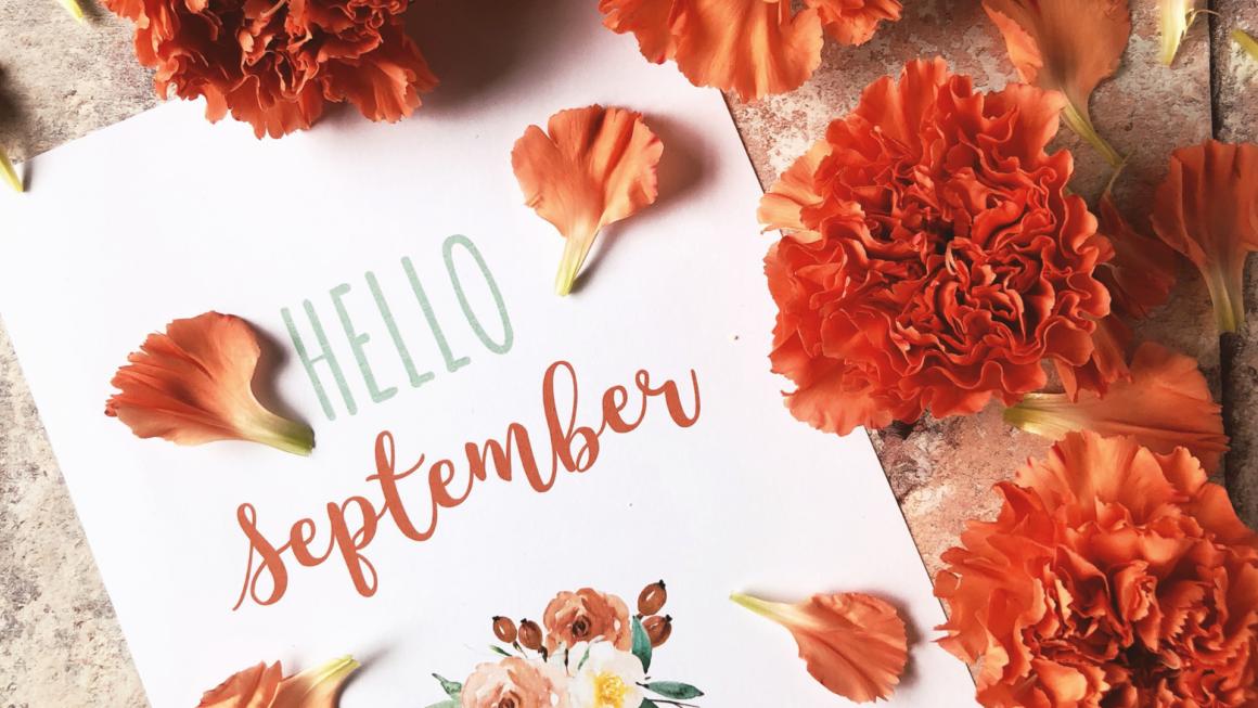 Que faire au potager en septembre
