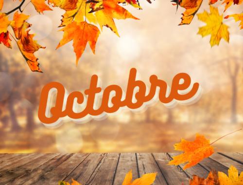Que faire au potager en Octobre